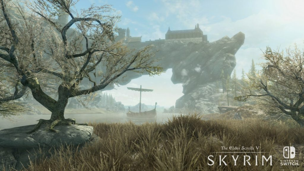 Image du jeu The Elder Scrolls V Skyrim sur Switch