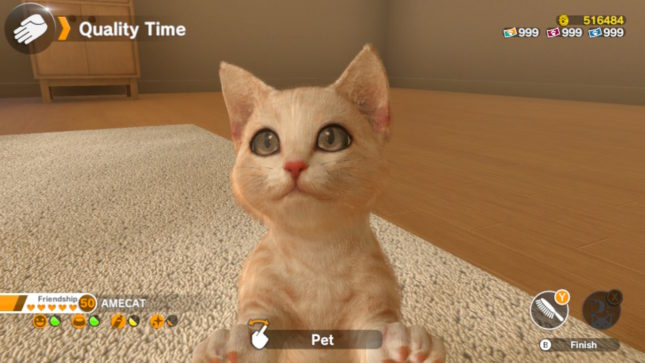 Jeu Little Friends Dogs & Cats sur Nintendo Switch : rencontre avec votre chaton