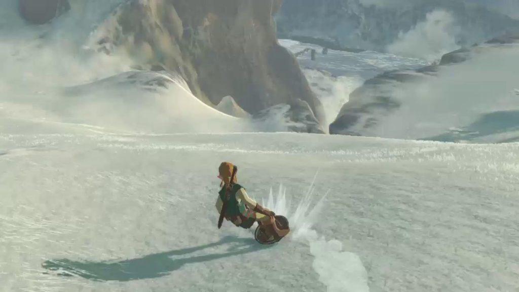Surfer zelda